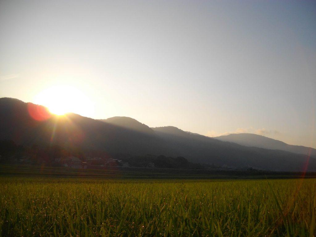 御影山の方から昇る朝日(はらだ自然農園)