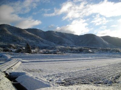 雪化粧した田園