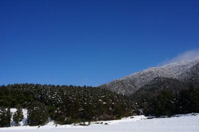 山と雪と無農薬の田んぼ