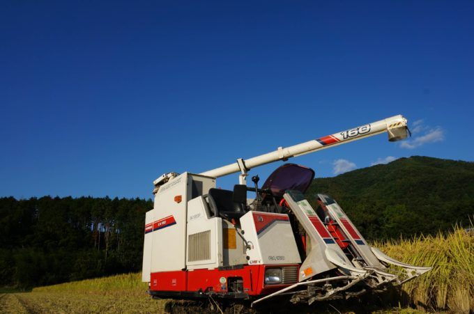 収穫初日に撮影(10月13日)京都丹波の里はらだ自然農園